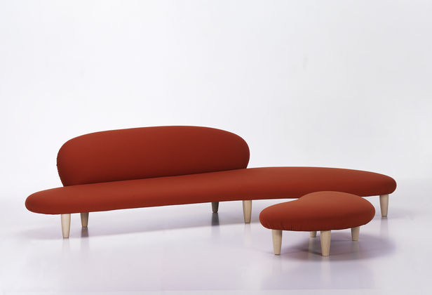 Freeform Sofa and Ottoman
