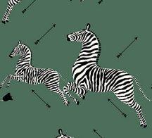 zebra - serengeti green