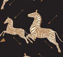 zebra - black